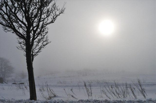 Snow and mist on Warwick road