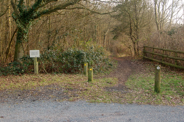 Carparking space for disabled visitors to Nun Wood