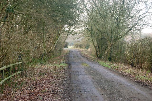 Track into Nun Wood