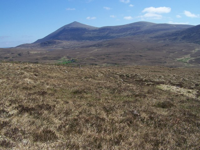Fence around forest plantation from S flank of Beinn na Glas-chuille.