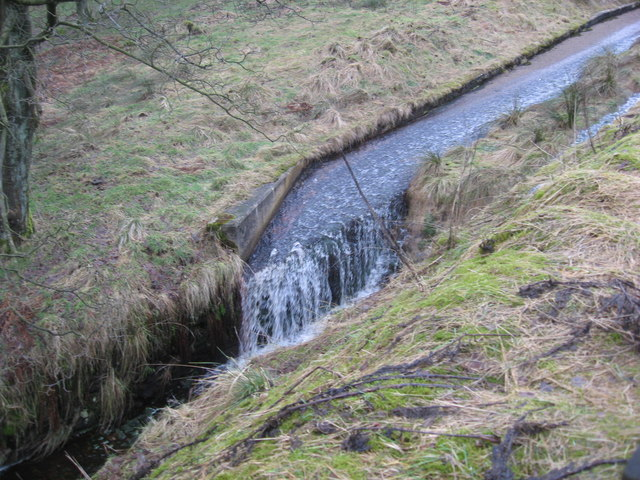 Overflow beside lightwood reservoirs