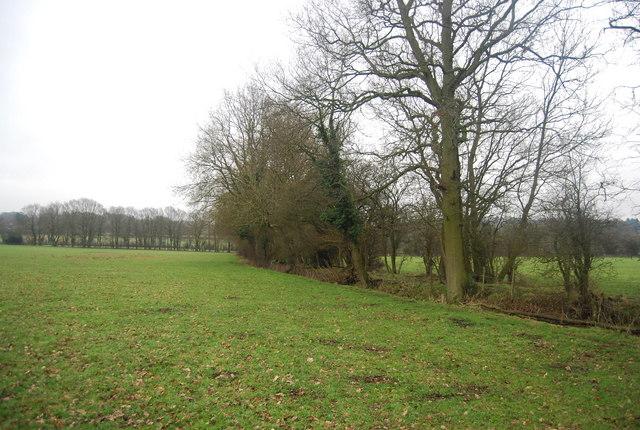 Footpath along the hedge near Beckett's Farm