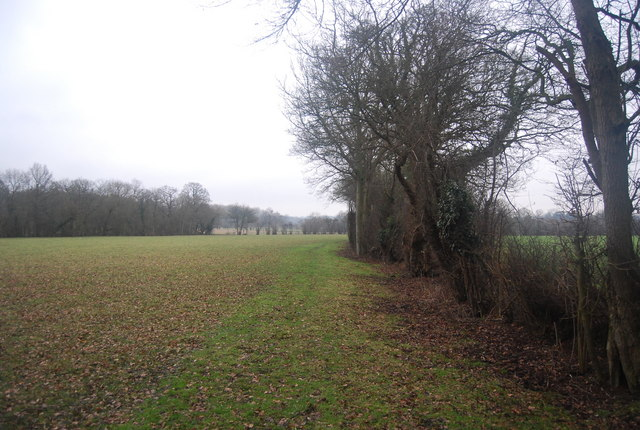 Footpath heading south along the hedge