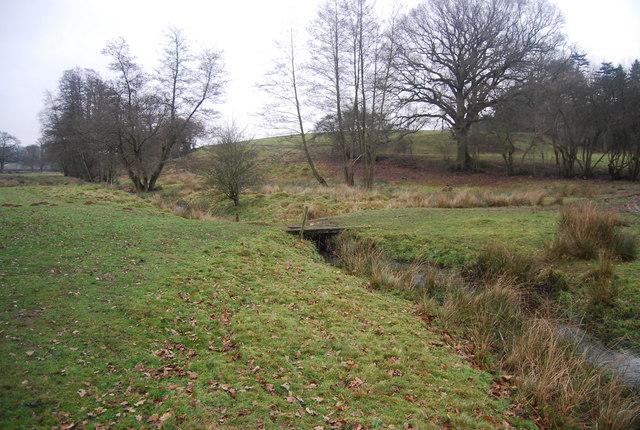 Small footbridge over a small stream