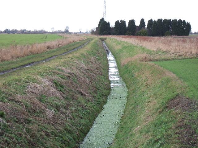 Green ditch