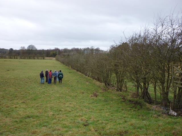 Hedge line, Carr Bank