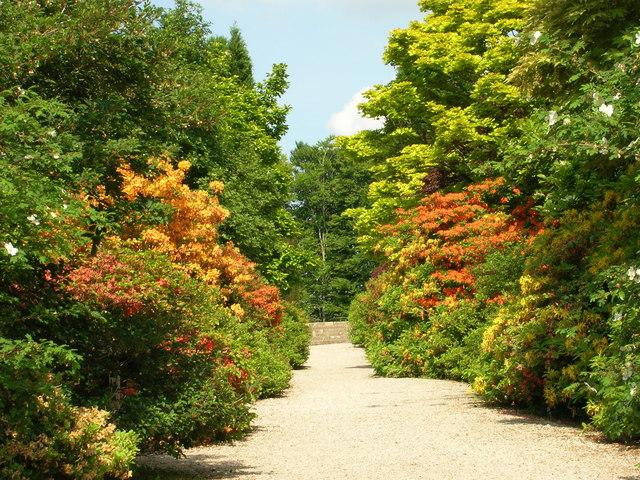 Castle Drogo Gardens