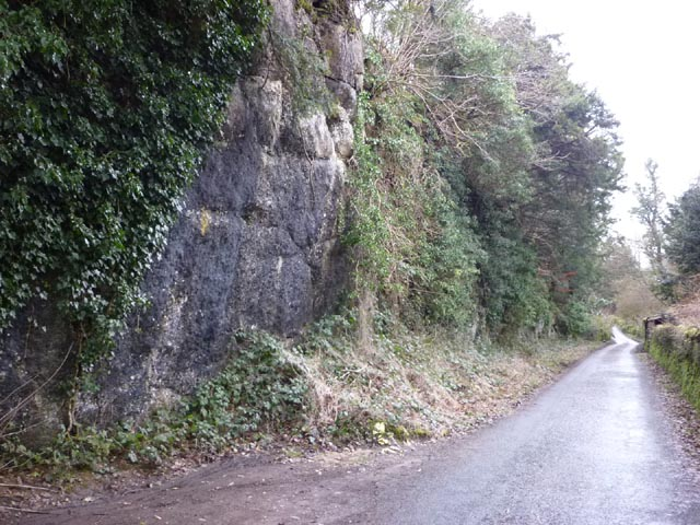 Throughs Lane, Storth