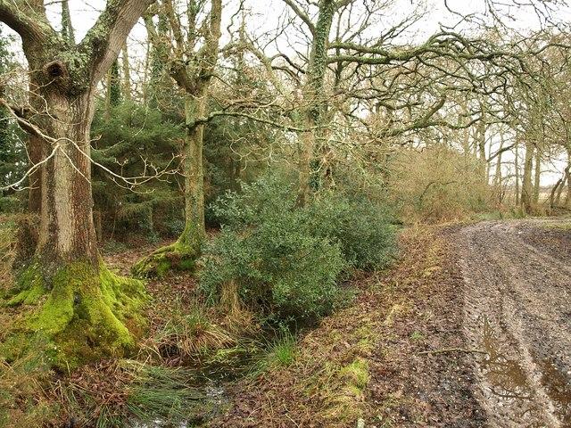 Near North Bestwall