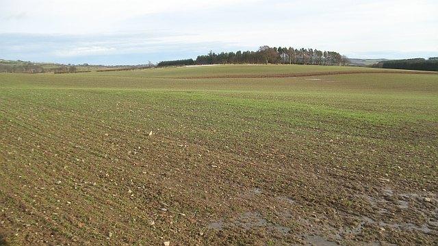 Farmland by Preston
