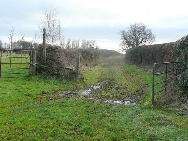 A green lane footpath