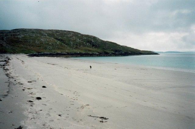 Lone dog on the beach on Eriskay