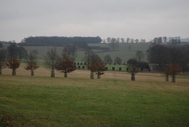 Parkland, Penshurst Park