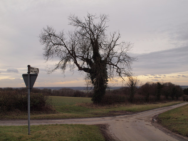 The Road down to Saxby All Saints
