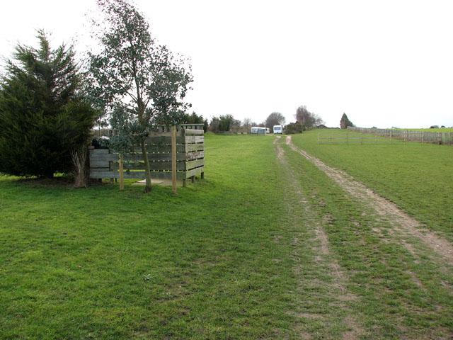 Track through Rose Farm touring park
