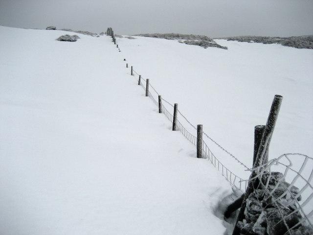 Boundary Fence on Darnbrook Fell