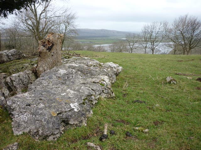 Limestone outcrops near the top of Haverbrack Fell