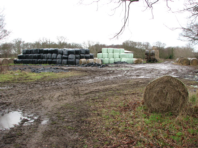 Silage bales south of Doles Farm