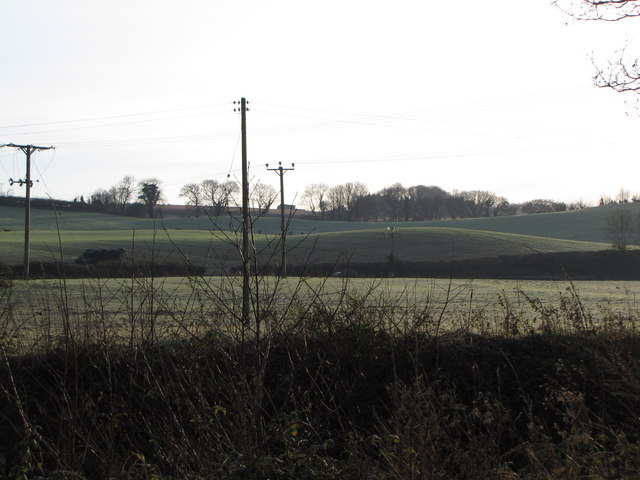 Fields east of Hungerford