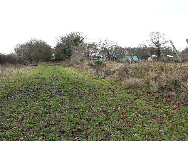 Gt Yarmouth to St Olaves railway - Belton/Bradwell
