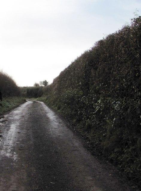Lane south of Golsoncott