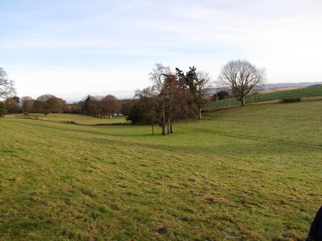 Shallow valley east of Croydon Hall