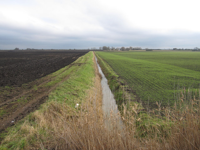 Track and ditch across the fen