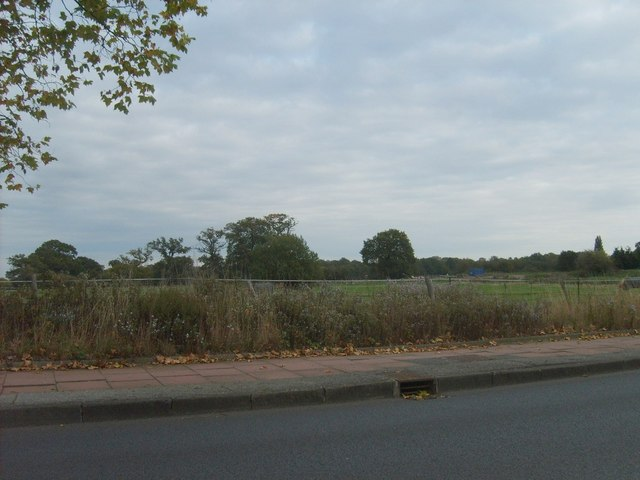 Hayes Fields