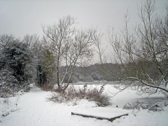Little Dawley, Lower Balancing Pool in winter