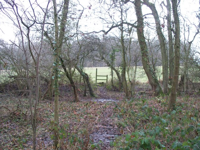 Path to Sedgecombe Farm