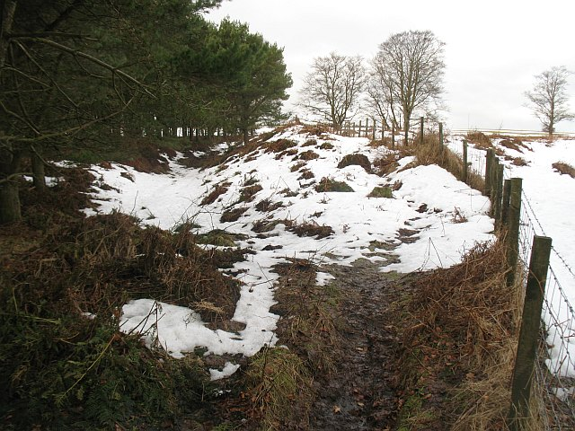 Hill fort, Marygoldhill