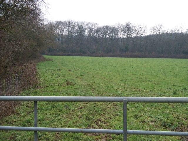 Sedgecombe Plantation