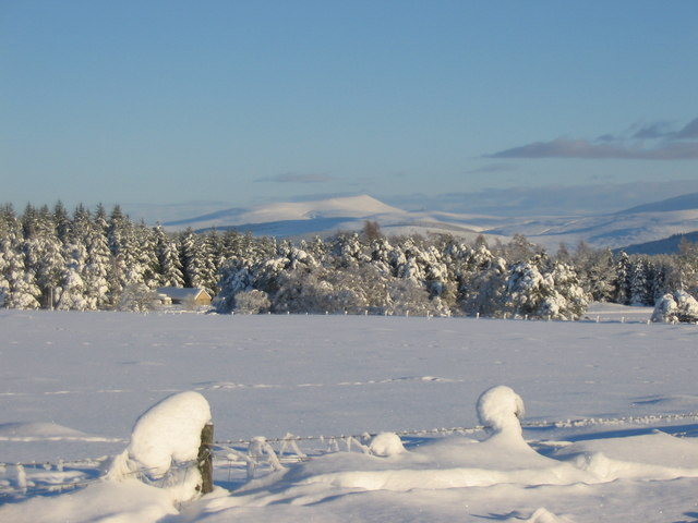 Snowy fields at Ballieward