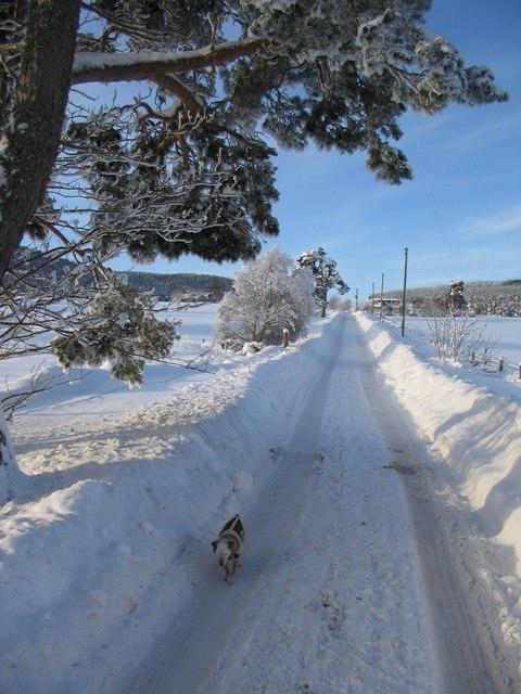 Old military road at Ballieward
