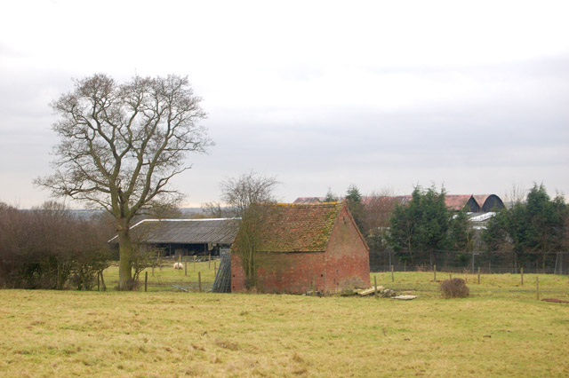 Shed and buildings, Sunnyside Farm, Tomlow