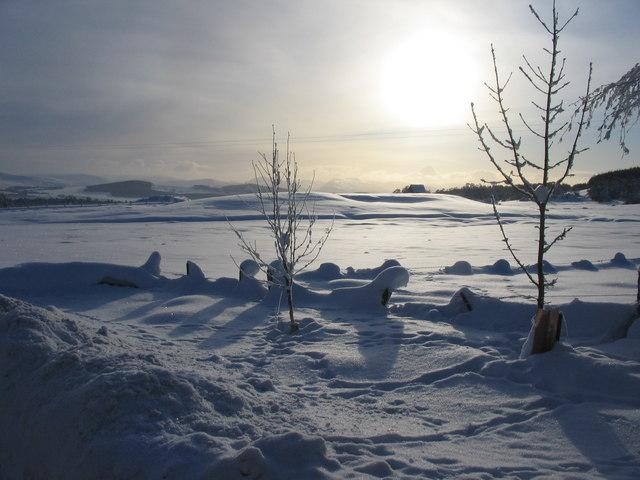Snow fields at Ballieward