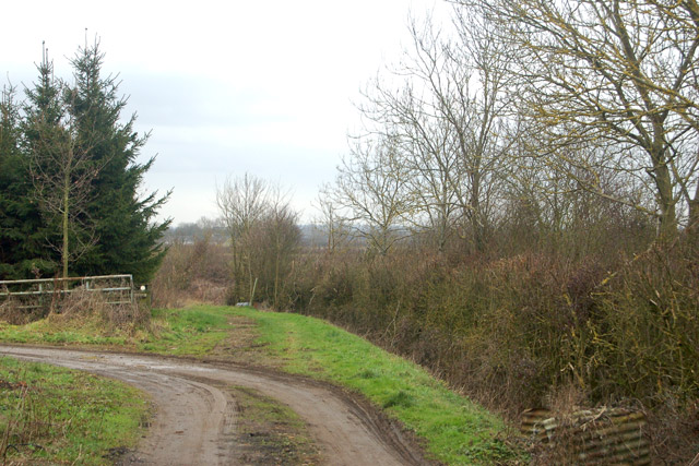 Farm track (left) and bridleway (straight ahead), Sunnyside Farm