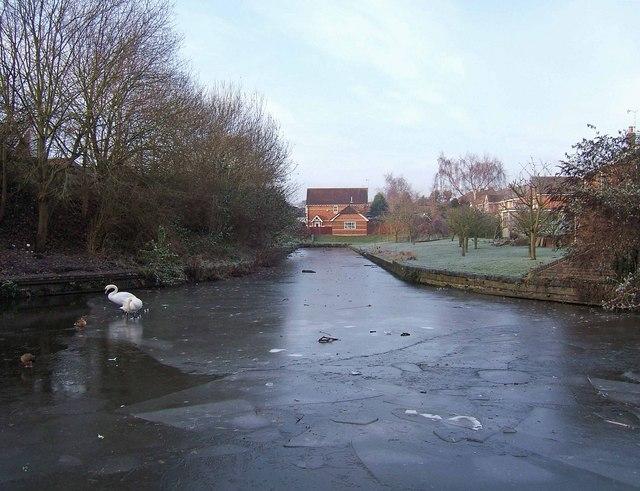 Frozen canal arm, Staffs & Worcs Canal