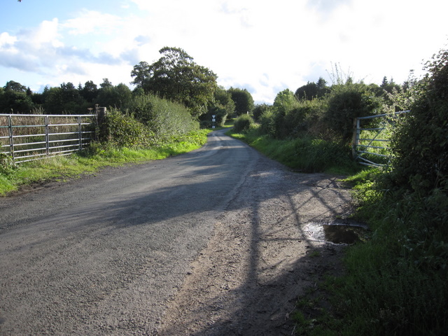Field gates in Rake Lane, Hawarden