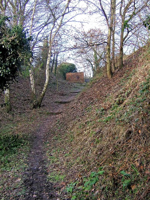 Steps on footpath from Timber Lane