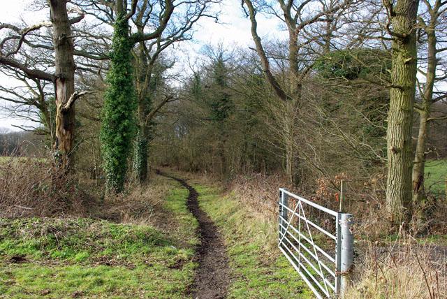Courtoak Lane