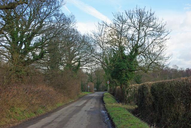Perrylands Lane