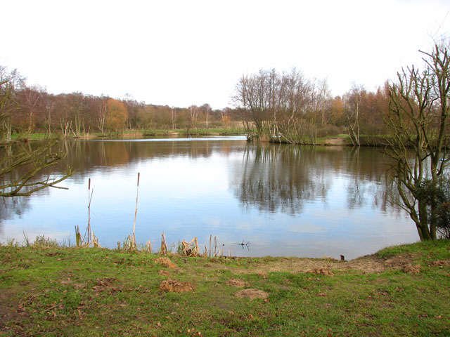 View across a fishing pond at hall farm evelyn simak for Farm pond fish