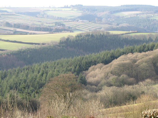 View over Slowley Wood from Stout's Way Lane