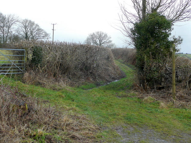 Green lane and footpath
