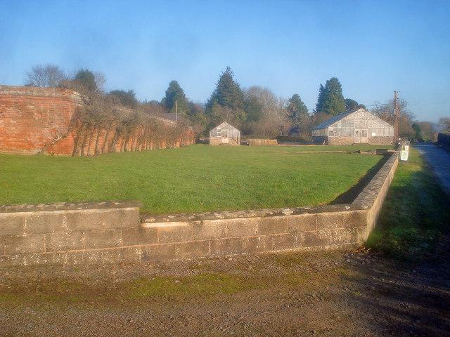 Walled garden at Bromesberrow Nurseries