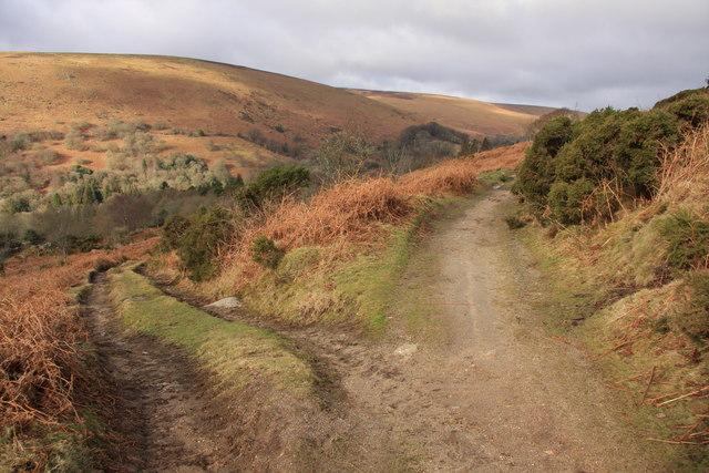 Tracks below Chinkwell Tor