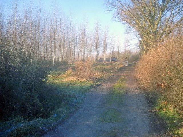 Farm track near Cobb's Cross