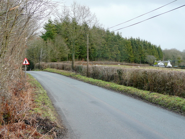 Lane to Brilley