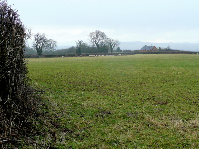 Pasture south of Green Farm